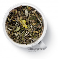 Непальский плантационный белый чай Gutenberg Белый Гималайский (Himalayan White)